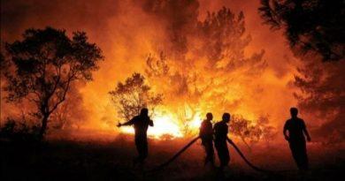 Federacija BiH šalje 41 vatrogasca u Tursku da pomognu u gašenju požara